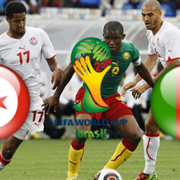 Match Tunisie Cameroun en live streaming : Retransmission en direct vid�o sur Camer.be
