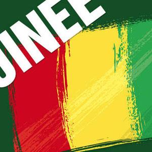"""GUINÉE :: Guinée: le ministre de l'Intérieur et deux responsables limogés pour """"faute lourde"""" :: GUINEA"""