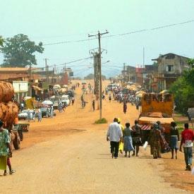 Deux braconniers camerounais arr�t�s au Congo et en R�publique centrafricaine :: CAMEROON