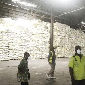 Cameroun : Pol�mique autour de 7000 tonnes de riz toxique bloqu�es au port de Douala