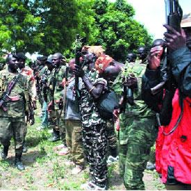 Cameroun : 100 combattants de la Seleka assi�gent un village camerounais
