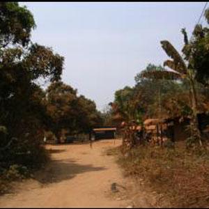 Cameroun: Gouverneurs et pr?fets accus?s d?arracher les terres :: CAMEROON