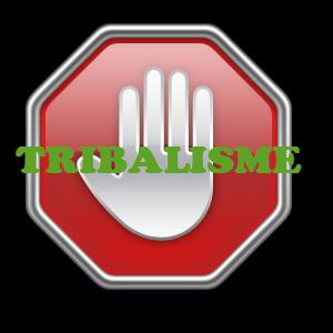 Alerte contre l'Ethnofascisme au Cameroun