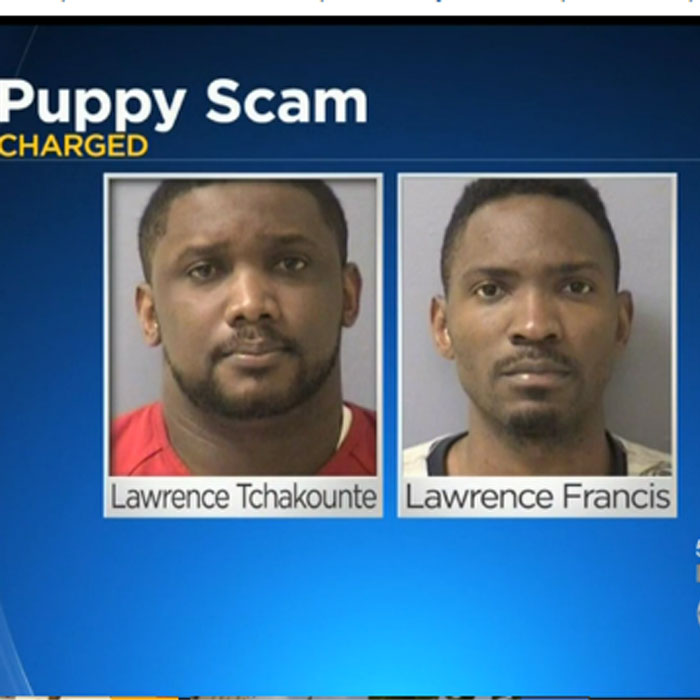etats-unis-usa-3-african-nationals-facing-charges-in-western-pa-internet-fraud-scheme-united-states