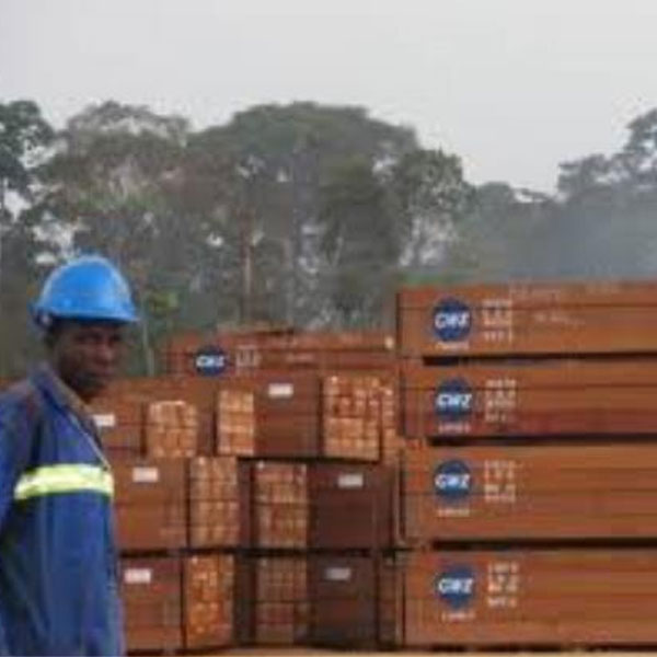 CAMEROUN :: Security Crisis in South West Region of CAMEROON: Suspension of CAFECO S.A Activities.