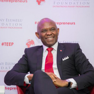 Cameroun - Fondation Tony Elumelu : 19 start-up camerounaises seront financées par sa Fondation :: CAMEROON