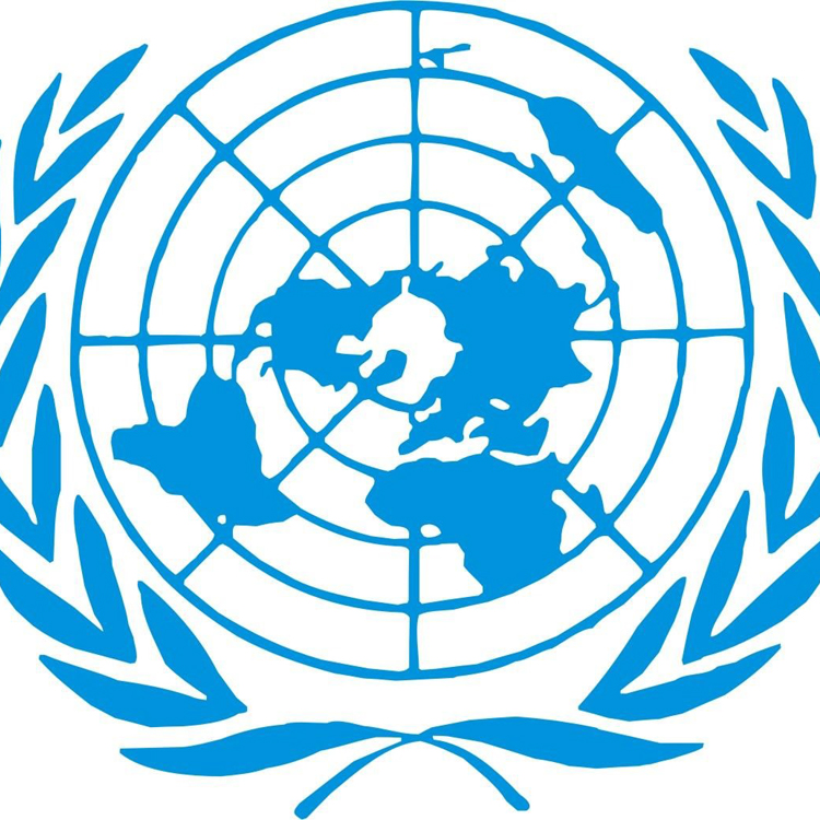 CAMEROUN :: Les experts criminels tancent l'Onu :: CAMEROON