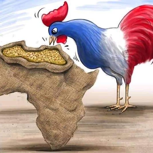Le Sommet parisien pour le développement de L'Afrique: Ramage avant le plumage