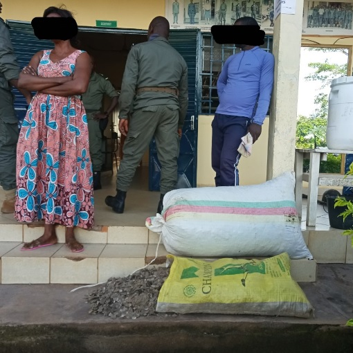 Arrested for pangolin scales trafficking in Mbalmayo
