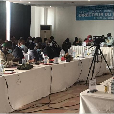 Les experts des questions des forêts de 08pays du bassin du Congo et du Sahel en conclave à Douala