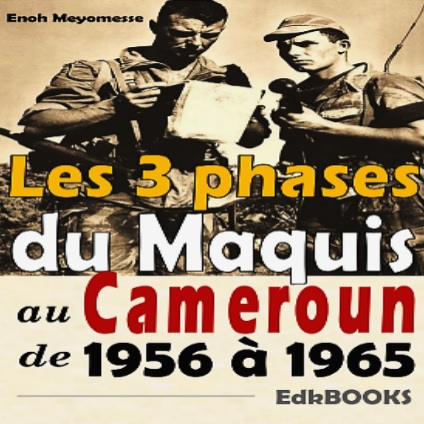 Les 3 phases du maquis au Cameroun