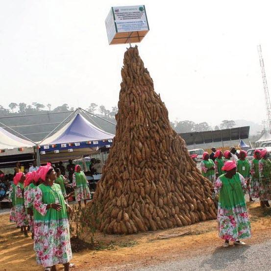 Les promesses non tenues du comice d'Ebolowa