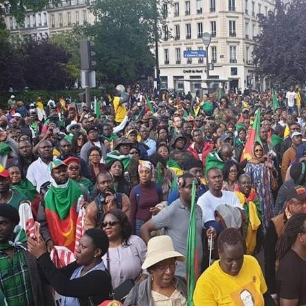 Conseil d'administration: Le Conseil des Camerounais de la Diaspora dresse son bilan d'activité