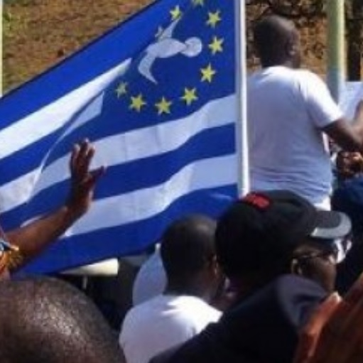 """Des militants """"Ambazoniens"""" manifestent devant l'hôtel Intercontinental de Genève"""