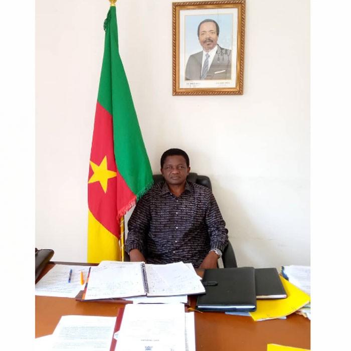 Maire de la ville-maires d'arrondissement : Dialogue de sourds à Yaoundé