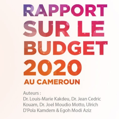 Voici le rapport de Nkafu Policy Institute sur budget 2020 au Cameroun