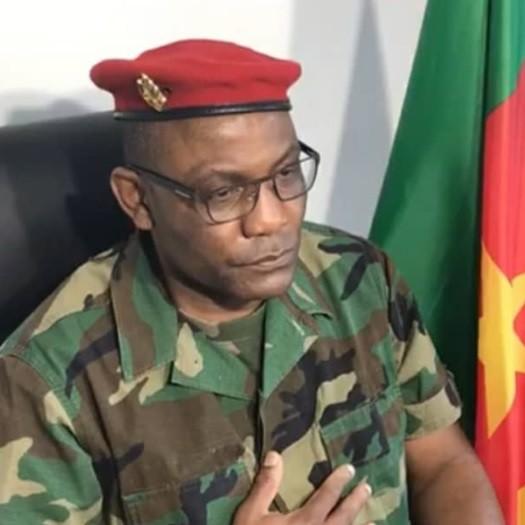 Etat de la révolution camerounaise,diaspora:Mise au point du Conseil des Camerounais de la diaspora